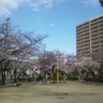 桜の咲く時期はワクワクする。その気持ちをプラス思考に!